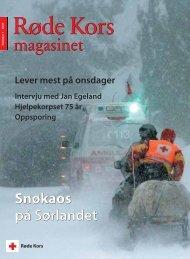Snøkaos på Sørlandet