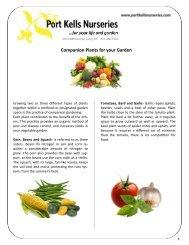 Companion Plants for your Garden - Port Kells Nurseries