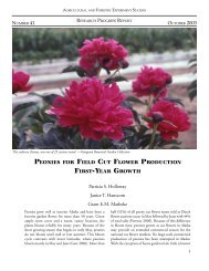 PEONIES FIELD CUT FLOWER PRODUCTION FIRST-YEAR GROWTH