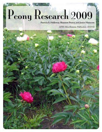Peony Research 2009