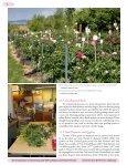 An In Ha Selling Alaska Cu Flower Peonies - Page 4