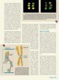 empaquetado permanentemente - Page 3