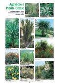 Palme - Page 2