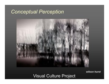 Conceptual Perception