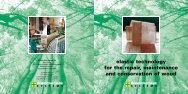 elastic technology for the repair maintenance and conservation of wood