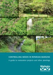 Controlling weeds in riparian margins - Waikato Regional Council