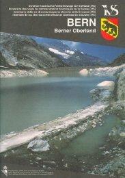 im Berner Oberland - IVS Inventar historischer Verkehrswege der ...