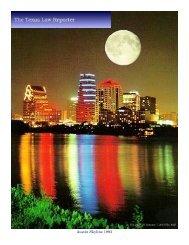 Austin Skyline 1993