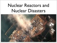 Nuclear Reactors and Nuclear Disasters