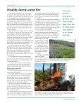 Steward - Page 3
