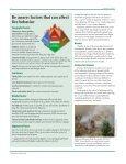 Steward - Page 6