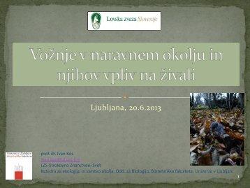 Ljubljana 20.6.2013