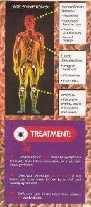 Understanding Lyme Disease - Page 5