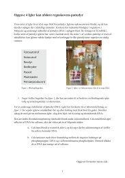 Opgave 4 Igler kan afsløre regnskovens pattedyr