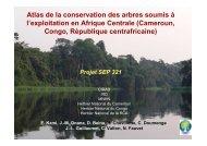 Voir la restitution du projet faite en avril 2010 - Sud Expert Plantes