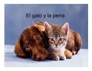 El gato y la perra