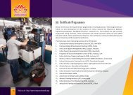(ii) Certificate Programmes
