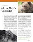 North Cascades Grizzly Bears - Page 5