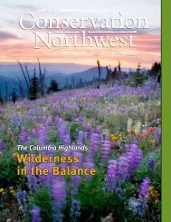 Wilderness in the Balance