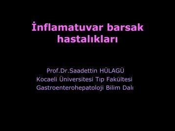 İBH ve tedavisi - Prof. Dr. Sadettin Hülagü