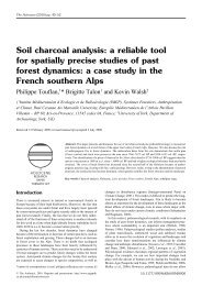 Soil charcoal analysis: a reliable tool for spatially precise ... - IMEP