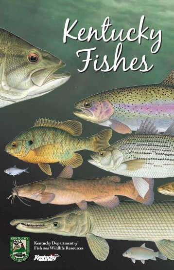 Kentucky Fishes