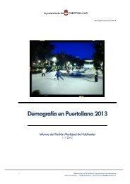Demografía en Puertollano 2013