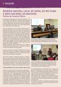 FOLHA VIVA - Page 4