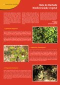 Dia Mundial do Ambiente - Page 6