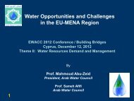 Water Opportunities and Challenges in the EU-MENA Region