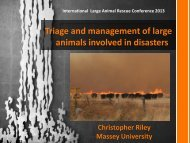Triage and management of large animals involved in disasters