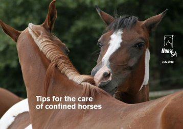 Tips for the care of confined horses