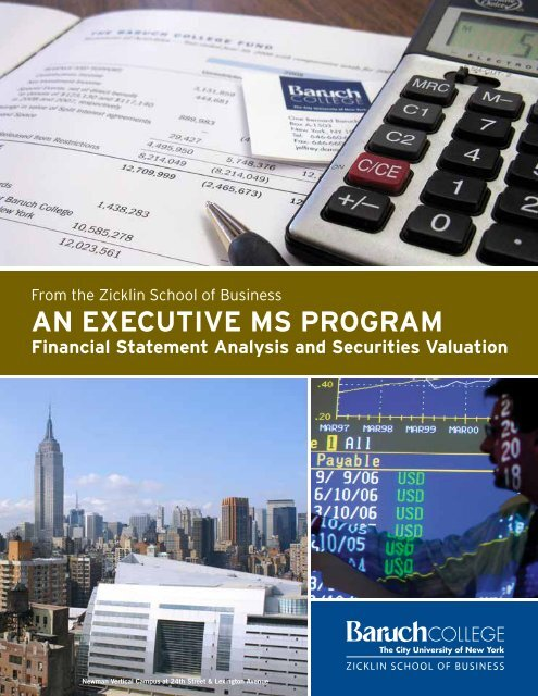 AN EXECUTIVE MS PROGRAM