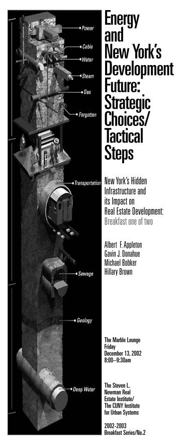 Energy and New York's Development Future Strategic Choices/ Tactical Steps