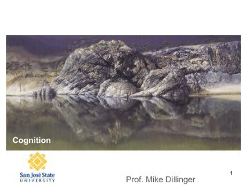 Cognition Prof Mike Dillinger