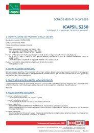 ICAPSIL S250