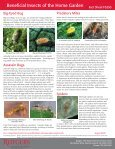 Beneficial Insects of the Home Garden - Page 4