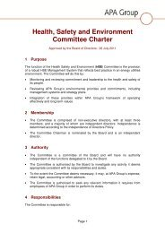 Health Safety and Environment Committee Charter