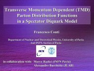 Conti Francesco - The Nucleon Structure - Infn