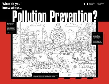 Pollution Prevention?