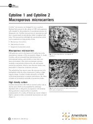 Cytoline 1 and Cytoline 2 Macroporous microcarriers