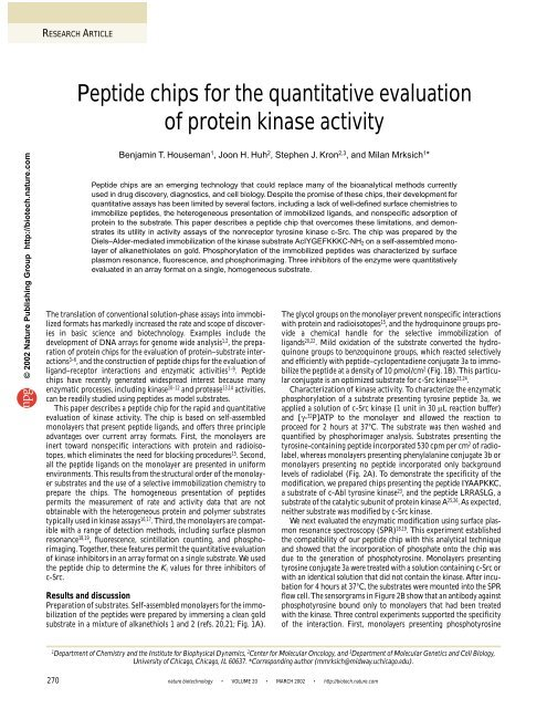 Peptide chips for the quantitative evaluation of protein kinase activity