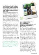 The Loop Spring 2015 web.pdf - Page 5