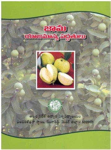 Jama Yajamanyam (Telugu)