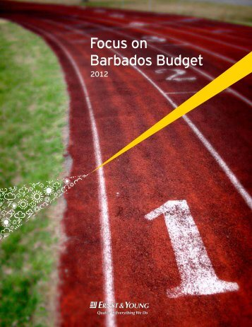 Focus on Barbados Budget