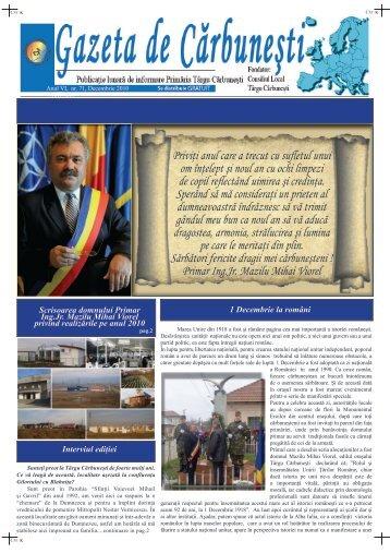 Decembrie 2010 - Primaria Tg-Carbunesti