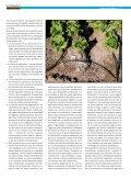 sociedades - Page 2