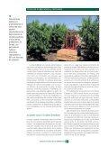 españoles - Page 5