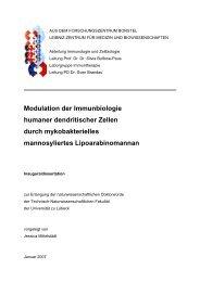 Modulation der Immunbiologie humaner dendritischer Zellen durch ...