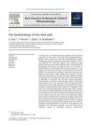 The Epidemiology of low back pain - Australian Health Workforce ...
